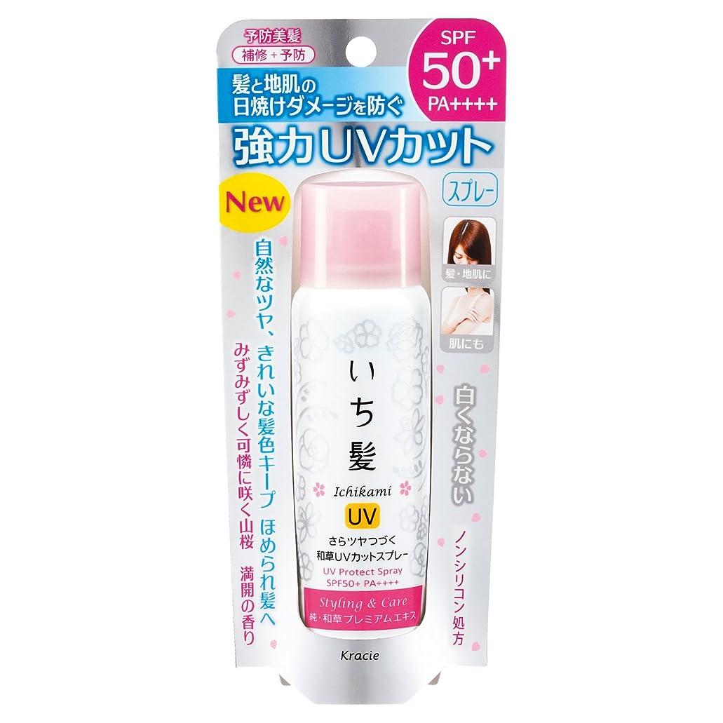 翻訳する明るくするサリーいち髪 さらツヤつづく和草UVカットスプレー 50g
