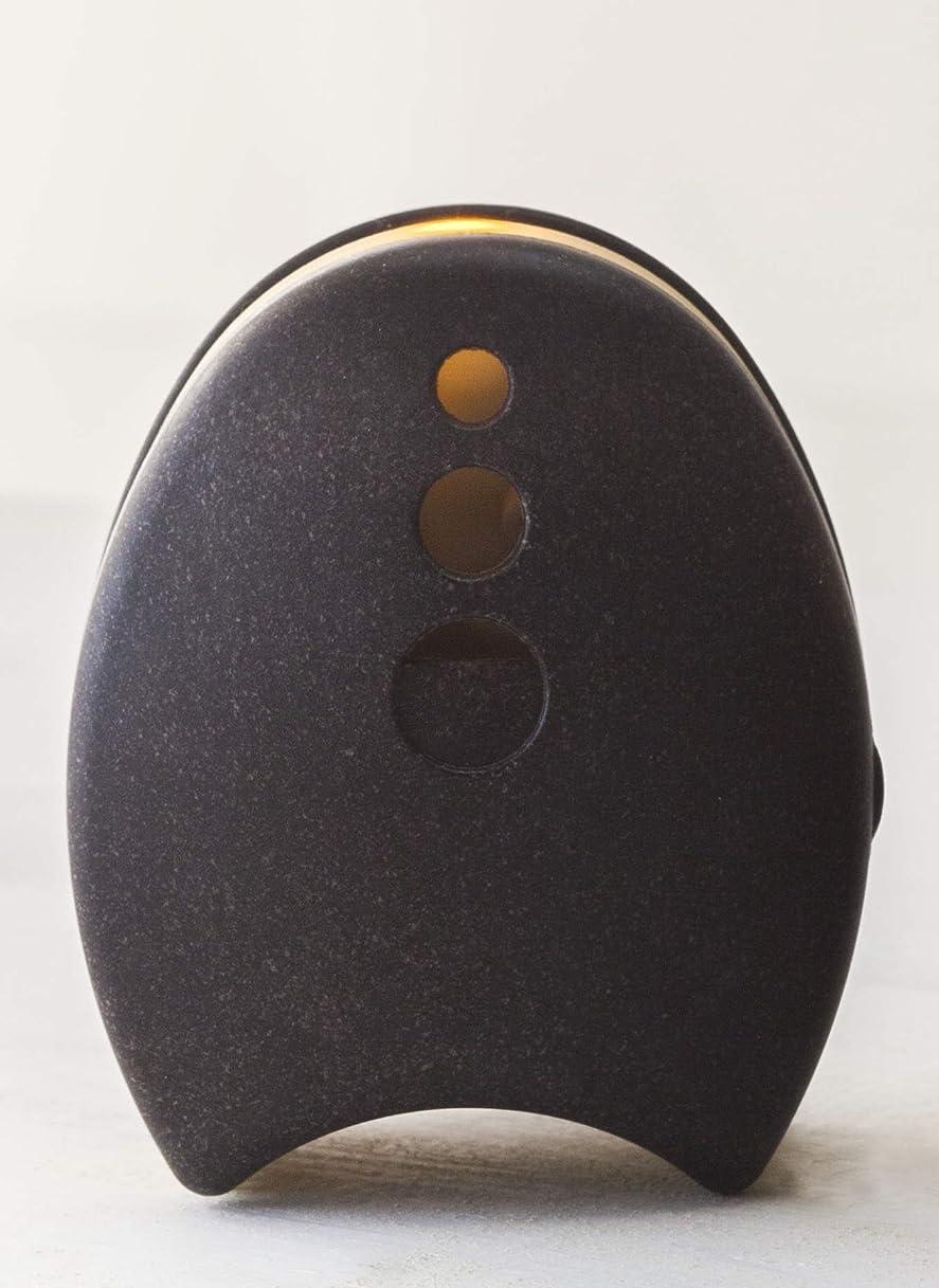 なぞらえるかなりのアクセルウッドブリーズ Ecominilumi レインボーライト ブラック