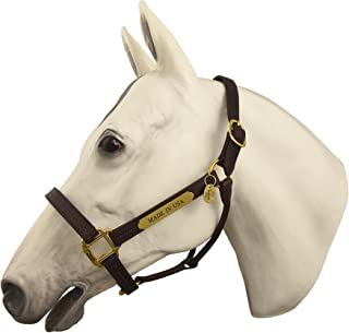 Horse Fare Products Fixed Leather Halter with Solid Brass Hardware & Customized Nameplate- Made in the USA