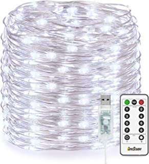 Homestarry Fairy Lights, USB Plug Twinkle String Lights with Remote White Decorative Lights for Bedroom Patio Christmas Wedding Party Dorm Indoor Outdoor, 33Ft 100LEDs, Daylight White