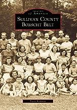 Sullivan County's Borscht Belt   (NY)  (Images of America)