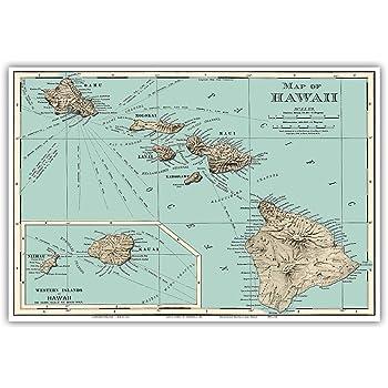 Baliscapus Aculeatus 9in x 12in Hawaiian Fish Nakunuku State Fish of Hawai/'i Vintage Colored Engraving c.1905 Master Art Print - Humuhumunukunukuapuaa
