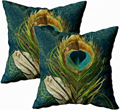 TOMKEY 2 Packs Hidden Zippered 18X18Inch Soft Peacock Feather case,Vintage Teal Decorative Throw Cotton Pillow Case Cushion Cover for Home Decor