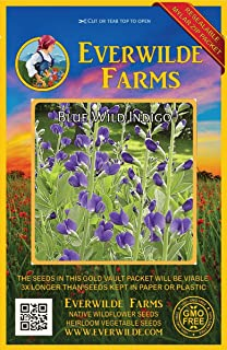 Everwilde Farms - 60 Blue Wild Indigo Native Wildflower Seeds - Gold Vault Jumbo Seed Packet
