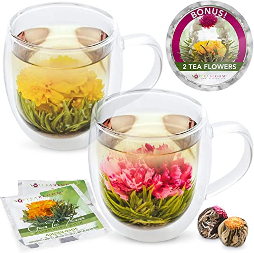 Teabloom Extra-Large (18oz / 550ml) Insulated Double Wall Glass Mugs & Blooming Tea Flowers (Set of 2 Mugs + 2 Flower...