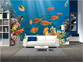 wall26 - Coral and Fish in The Red Sea.Egypt - Removable Wall Mural | Self-Adhesive Large Wallpaper - 66x96 inches