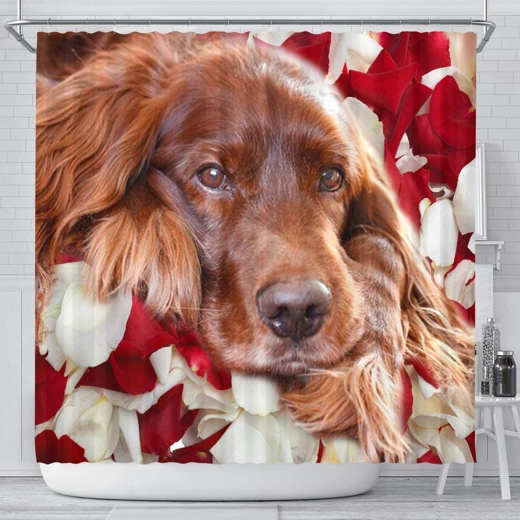 Pawlice Lovely Irish Setter Print Curtains Shower Max 61% OFF Wholesale