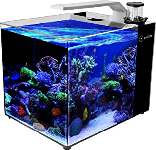 GankPike 8-Gallon Saltwater Aquarium Marine Fish Tank Reef Tank with Lid, Protein Skimmer, Heater, LCD Digital Thermometer and Pump