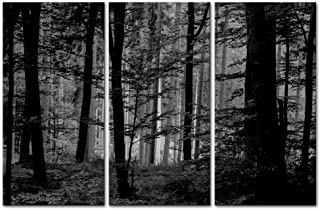 Canvas Wall Art Paintings For Home Decor Black And White Forest Picture 3 Pieces Modern Giclee Framed Artwork The Tree Pictures For Living Room Decoration Natural Scenery Photo Prints On Canvas