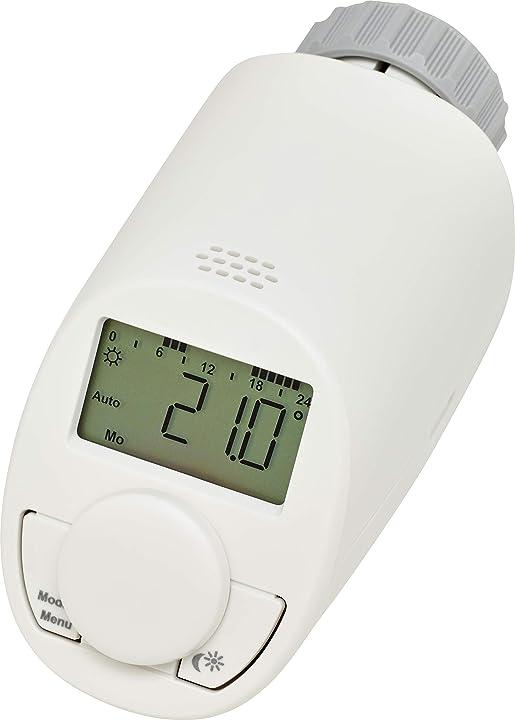 Termostato per radiatore universale  eqiva 132231k2 modello n