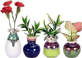 Planter Terrarium Hydroponic, Hand-Crafted Planter Propagation Plant Station, Mini Plant Bulb Vase Small Ceramic Planters ...