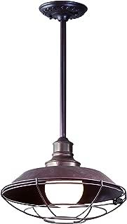 Troy Lighting F9273OR, Circa 1910 Dark Sky Outdoor Ceiling Light, 100 Total Watts, Old Rust