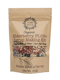Noelle's Naturals Organic Elderberry Syrup Making Kit - Makes 20oz of syrup, Our Concentrated Recipe is Easy to make, PLUS Goji, Echinacea, Astragalus, Rose hips, Ginger, Cloves & Cinnamon