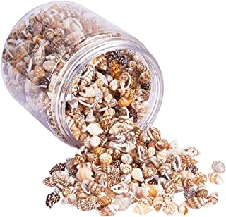 PH PandaHall Women's Elite About Tiny Sea Shell Ocean Beach Spiral Seashells Craft Charms For Candle Making Home Decoratio...