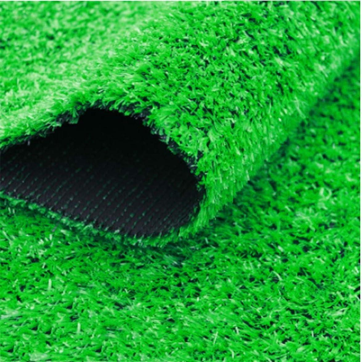 切断する廃棄陸軍YNFNGXU 15ミリメートルパイル人工芝屋外偽草マットグリーン暗号化庭人工芝 (サイズ さいず : 2x10m)