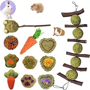 Rabbit Chew Toys for Teeth, Double Head Suspension, Natural Apple Wood Sticks with Timothy Grass Balls, Improve Dental Health for Rabbits Chinchilla Hamsters Guinea Pigs Gerbils Squirrels