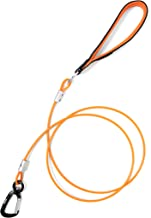 Best steel cable dog leash Reviews