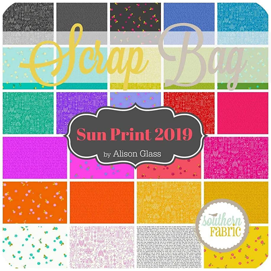 Andover Sun Print 2019 Scrap Bag (Approx 2 Yards) by Alison Glass 2 Yards of Fabric (at Least 8 Pieces) 2 to 17 inch Strips DIY Quilt Fabric
