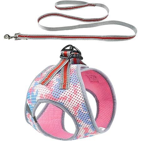 DYAprWu Air-mesh Dog Harness and Leash Set Step-in Vest Harness and Leash Set Escape-Proof Harness and Leash Set for Small Medium Dodgs and Cats