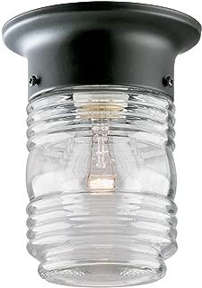 Westinghouse Lighting 6691900 One-Light Jelly Jar Porch-Light