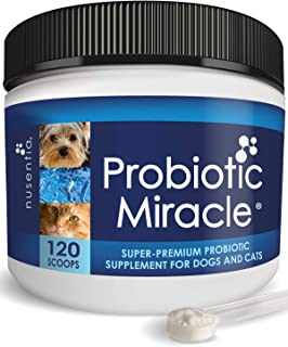 NUSENTIA Probiotics for Cats & Dogs - (120 Scoops) Probiotic Miracle - Advanced Formula to Stop Diarrhea, Loose Stool, and...