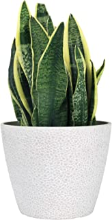 LA JOLIE MUSE 9.4 inch Plant Pot for Indoor and Outdoor Plants, Modern Planter with Irregular Dot Pattern, White Stone