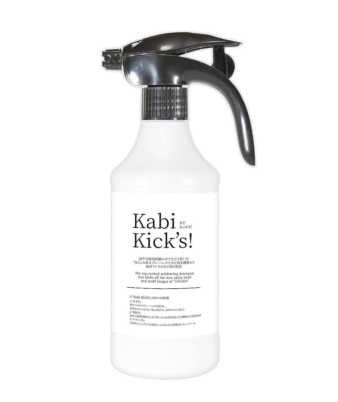 戦闘眠り石鹸強力! 業務用 カビ取り剤+防カビ機能 『カビキックス』 液スプレータイプ 450g