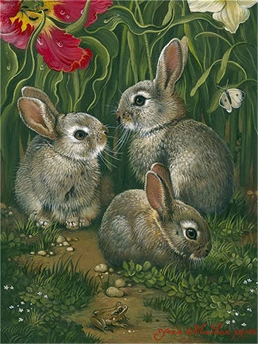 Diy Oil Paint by Number Kit for Adults Beginner 16x20 inch - Three Small Rabbits, Drawing with Brushes Christmas Decor Decorations Gifts (Without Frame)