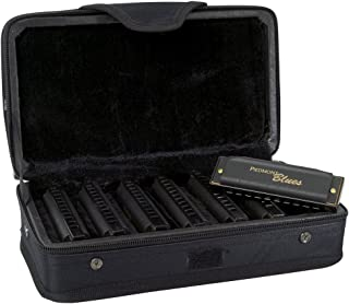 Best hohner diatonic harmonica Reviews