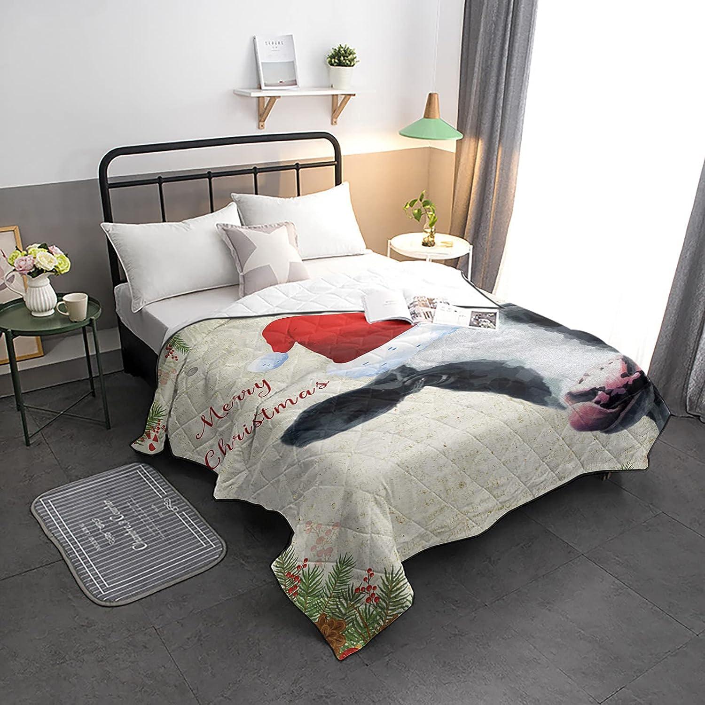 HELLOWINK Excellence Bedding Comforter Duvet Lighweight Twin Qu Size-Soft Choice