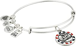 Alex and Ani - Snowboarding Bangle