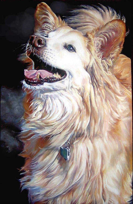 "HONGYUFU DIY 5D""Afghan Hound-Animal""Diamond Save money Complete Painting Classic ki"