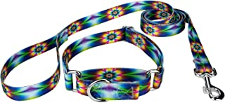 Country Brook Petz - Martingale Dog Collar & Leash - Groovy Collection
