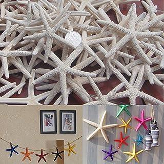 Gilroy 12piezas 8–10cm blanco dedo estrella de mar playa para decoración de boda fiesta hogar manualidades abalorios