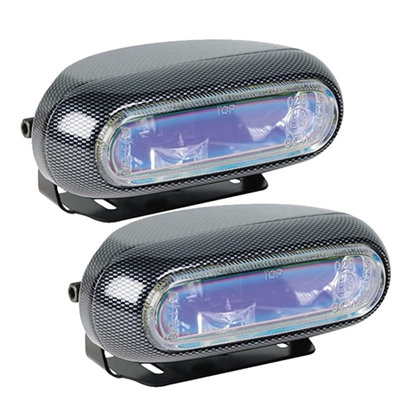 Hella H71010301 Optilux Model 1250 12V 55W H3 Fog Light Kit with Carbon Fiber Look and Blue Lens
