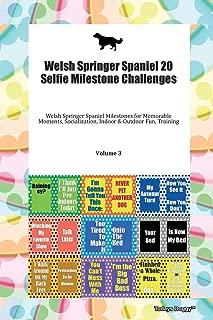 Welsh Springer Spaniel 20 Selfie Milestone Challenges Welsh Springer Spaniel Milestones for Memorable Moments, Socialization, Indoor & Outdoor Fun, Training Volume 3