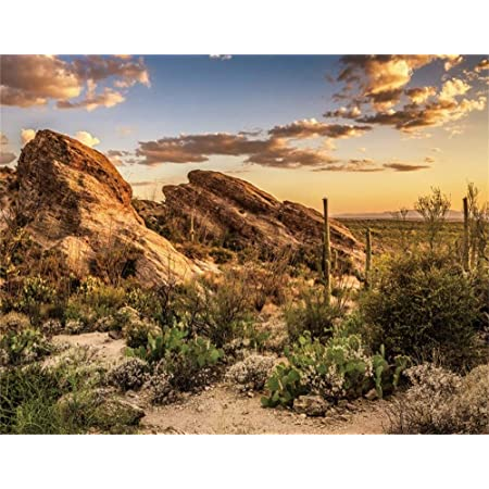 ALUONI 5x3ft United States,Monument Valley West Mitten and Merrick Butte Sunset Photography Backdrop Photo Backdrops Portrait Background Studio Props AM032324