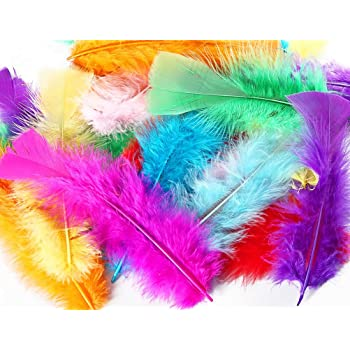TommoT 300 Pcs 5-7 Inch Colorful Turkey Feathers for DIY Crafts or Dream Catcher,10 Color Assorted Mix