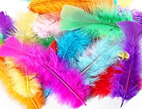 TommoT 100 Pcs 5-7 Inch Colorful Turkey Feathers for DIY Crafts or Dream Catcher,10 Color Assorted Mix