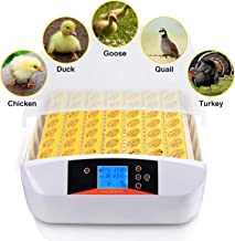 Currens Egg Incubator Digital Automatic Poultry Hatcher Egg Turning,Eggs Incubators Fertilized Chicken Duck Quail Brids Eggs for Hatching (56 Egg Incubator) [US Stock]