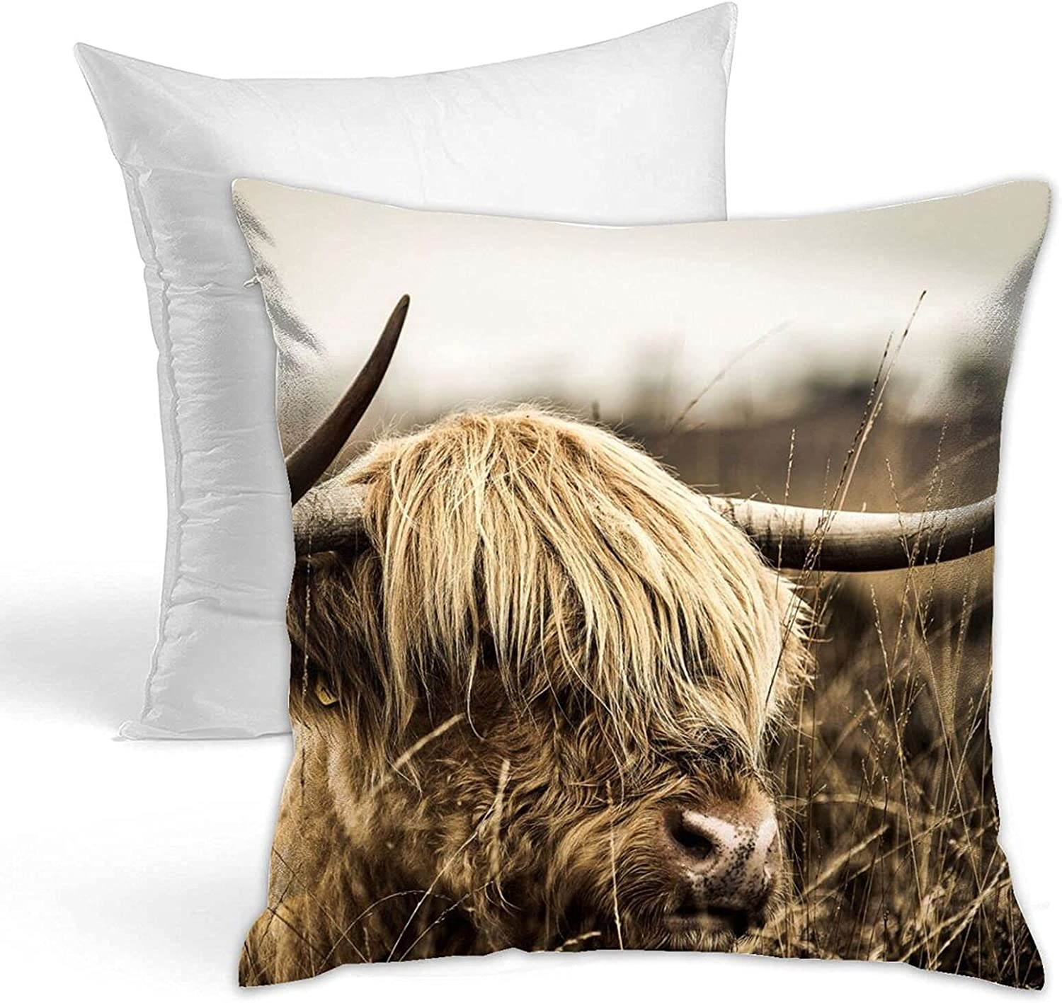 JUCHen Throw Pillow Highland Cow Tampa Mall Popularity for Cattle Decorative Be