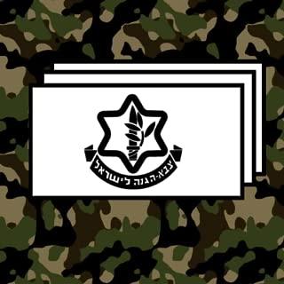 IDF Israel Defense Forces Flashcards