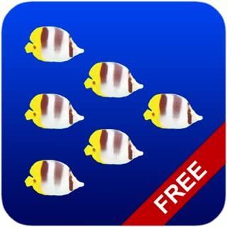 Fish Swarm Live Wallpaper FREE