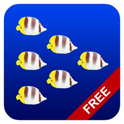 Essaim de poissons gratuite