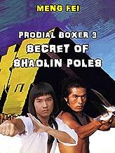 Prodigal Boxer 3 - Secret of the Shaolin Poles