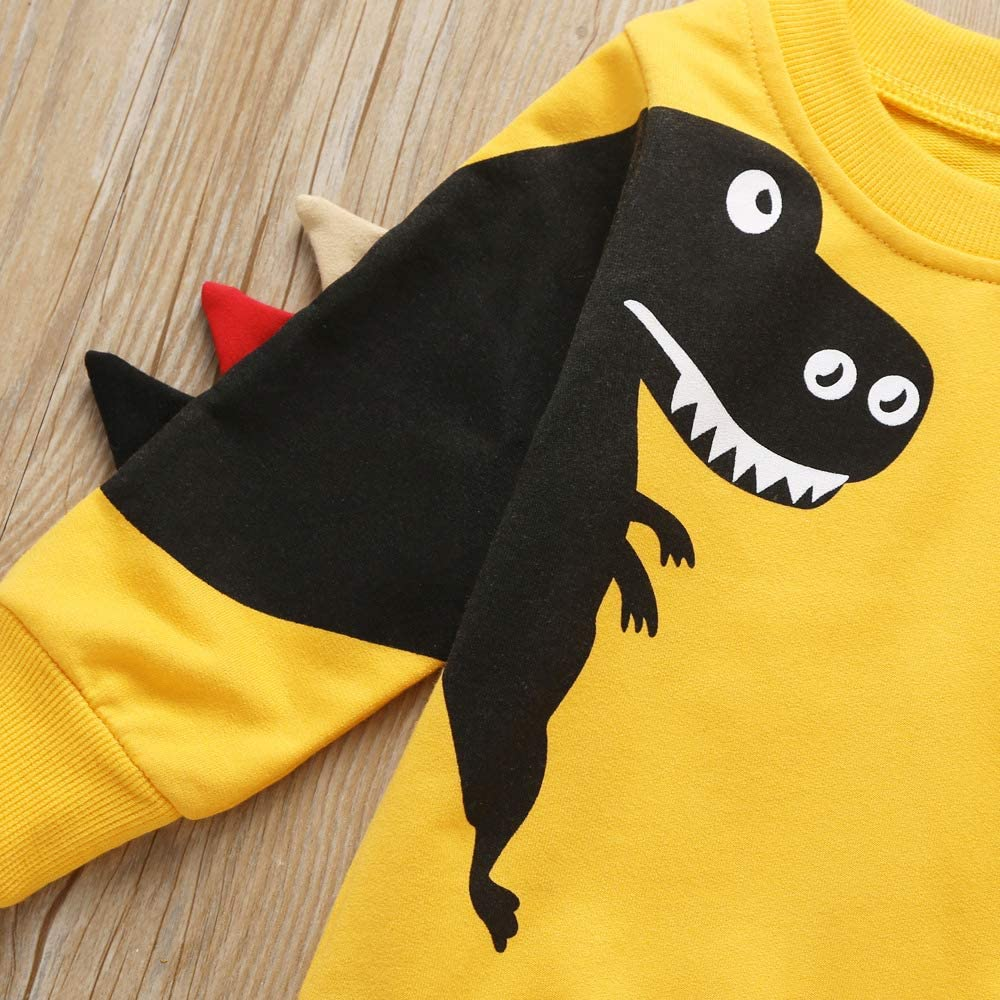 Toddler Sweatshirts Boys Pullover Long Sleeve Shirt Baby Cotton Crewneck Tops Outdoor