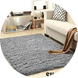 Carpet for Living Room Home Warm Plush Floor Rugs Fluffy Mats Kids Room Faux Fur Area Rug Living Room Mats Silky Rugs,Sliver Gray,80x120cm