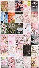 Mingo 30 Sheets Peach Blossom Paintings Retro Vintage Postcard
