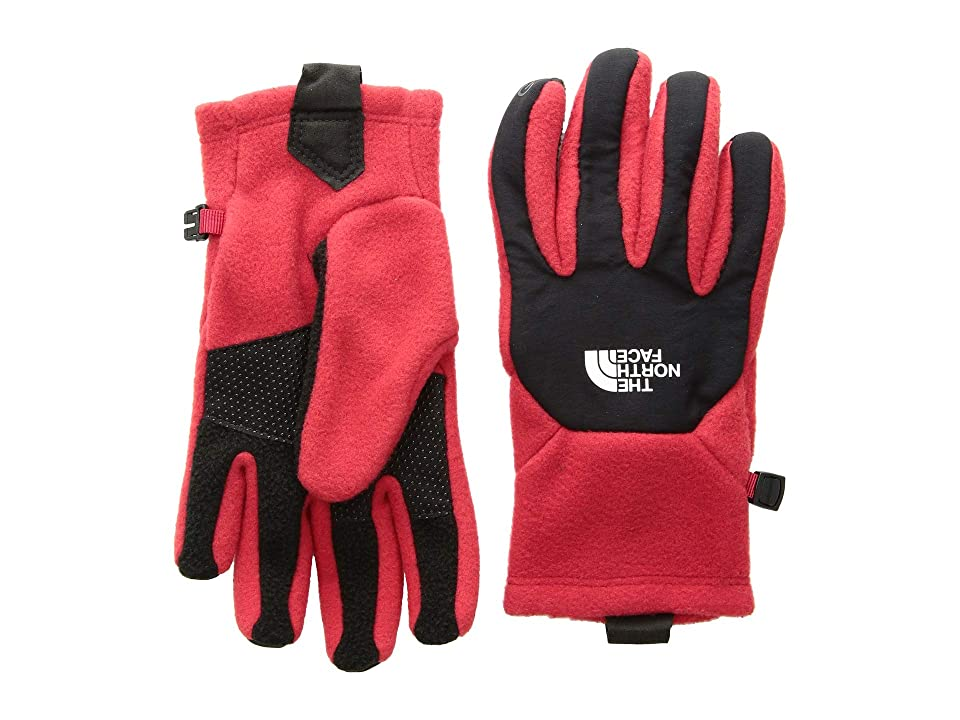 The North Face Kids Denali Etiptm Gloves (Big Kids) (TNF Red/TNF Black) Extreme Cold Weather Gloves