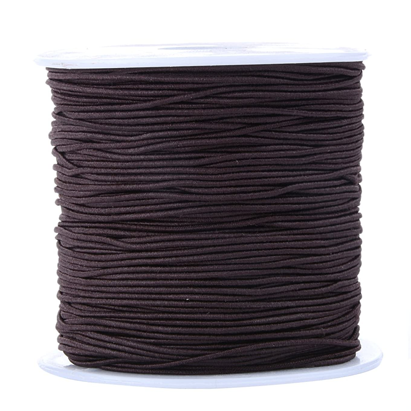 Bingcute 1.0MM Dark Brown Elastic Cord For Making Jewelry, 100 Yard csgzapkgkgov